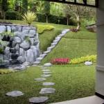 P4 backyard